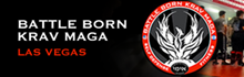 Battle Born Krav Maga | Formed to deliver the most effective self defense system in its purest form.
